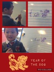chinese new year(1)